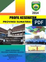 06 Sumatera Selatan 2014