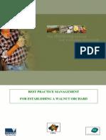 establish walnut orchard.pdf