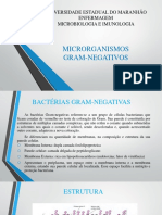 Microrganismos Gram Negativos