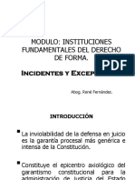 Incidentes y Excepciones.instituciones