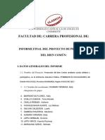 FORMATO INFORME FINAL DSI.docx