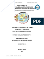 Informe de Campo i Geomorfologia