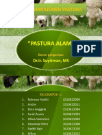 KELOMPOK 1 Manajemen Pastura