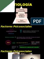 ETIOLOGÍA -  opiaceos