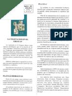 vegetación - ross, cracco y muñoz.pdf