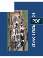 Biogas From Biomass