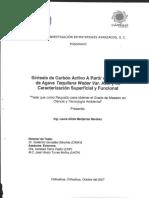 sintesis de carbon activado a partir de bagazo caracteristica superficial y funcional.pdf