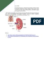 Definisi Chronic Kidney Disease