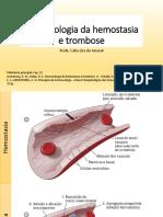 Aula 17  Farmacologia Da Hemostasia e Trombose