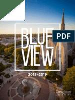 BlueViewDigital.pdf