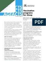 Sheep Vaccination Programs