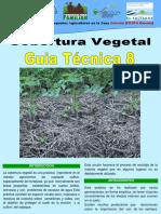 Vegetable 08