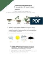 Identificar Las Características Deseables e Indeseables de Las Plantas y de Los Animales