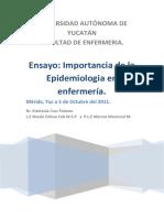 Ensayo Epidemiologia