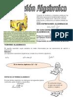 expresiones algebraicas 2012