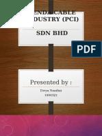 PCI Slides