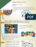 Diversidad Linguistica en El Mundo
