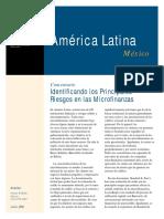 Mfg Es Documento Identificando Los Principales Riesgos en Las Microfinanzas 2004