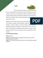 chifles proyecto empresarial.docx