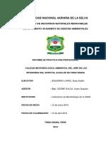 Calidad Microbiologica Ambiental Del Aire en Los Interiores Del Hospital Essalud en Tingo Maria