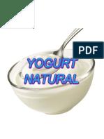 Cómo preparar yogurt casero y natural.docx