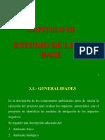 Capitulo III Estudio de Linea Base Marcapunta