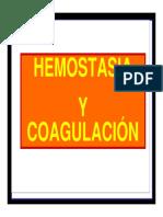 CLASE 5 HEMOSTASIA ALASPE.pdf