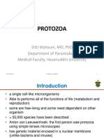 3.Protozoa