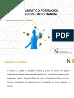 Sistema Linfático Formación, Composición e Importancia
