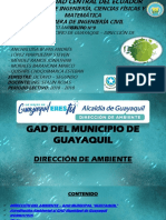 Gad Guayaquil
