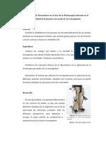 Aplicación de La Mecatrónica en El Área de La Fisioterapia Enfocado en La Rehabilitación de Piernas Con Ayuda de Un Exoesqueleto