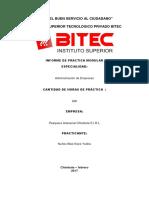 Informe Practica Pre Profesionales 1
