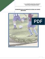 GUIAS DE CESPED ARTIFICIAL.doc