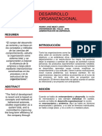 Desarrollo Organizacional (DO)