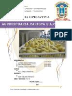 Auditoria Operativa Carioca Sac
