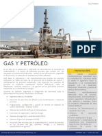 Cp Gas y Petroleo Esp (5)
