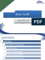 Basic Audit 2017