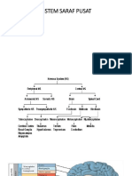 Sistem Saraf Pusat
