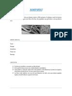 nanofibras (1).docx