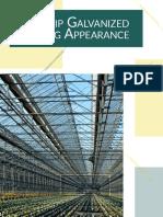 Galvanized_Coating_Appearance.pdf