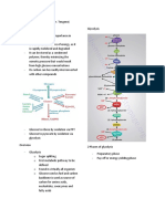 Biochem Carbohydrates Metabolism (Dr. Tanena)