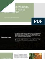 La Deforestacion en El Mundo y Paises Amazonicos