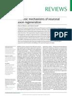 Intrinsic Mechanisms of Neuronal Axon Regeneration
