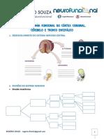 Rogério Souza Neuroanatomia Funcional Do Córtex Cerebral