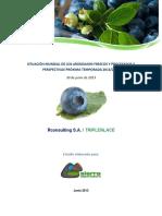 Situación mundial de los arándanos frescos y procesados y perpectivas próximas temporada 2013-2014.pdf