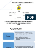 1839_PPT Case Anak