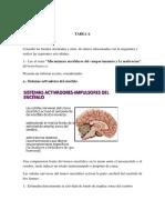 Tarea 4 de Anatomia y Fisiologia Del Sistema Nervioso.