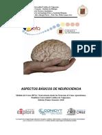 principios basicos de neuroanatomia