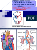Biofisica Clase 7 Biofisica de La Circulacion Sanguinea