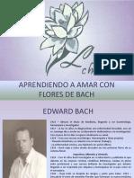floresdebachpoweracabado-140122173150-phpapp01